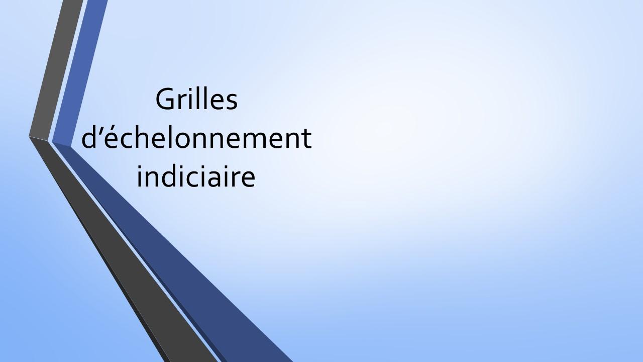Grilles d 39 chelonnement indiciaire cdg 84 - Grille indiciaire agent de maitrise territorial ...